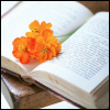 book- reading w flowers