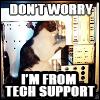 tech support cat