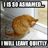 catmacros-so ashamed