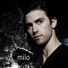 ginxy: Milo_Ginxy_Splash