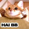 ayanamisama userpic
