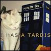 cat_macros
