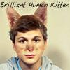 brilliant human kitten