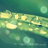 dhelix_studio userpic