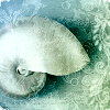 piorunia userpic