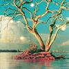 d: Nature magical tree (e)