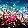 shirai_hoshi: field flowers