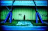 tata_cvet userpic