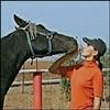 equus_chronica userpic