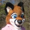 jax_fox_2005 userpic