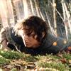 Hobbity forever