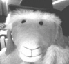 geraldthesheep userpic