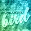 im.a.bird.