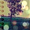 andtara userpic