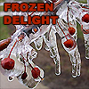 Frozen Delight by sapphire_song