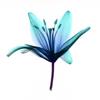 blueflor