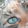 Cleo eye