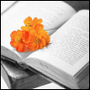 Reading - Knowledge Blossoming ☆