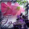 taris_faralini userpic