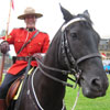 canadian, mountie, rcmp