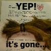 my donated hair