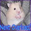 Newt Overload