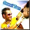 camel, sweet, tom boonen
