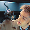 amelia cavendish: gemstar69 doctor who kitten