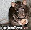 freyaw: ROUS