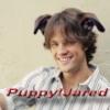 puppy!Jared