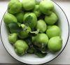 Яблочный Спас, мой урожай
