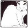 6_hip_6_cat_6 userpic