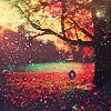 Stefy ~ ステフィ: Autumn Glow