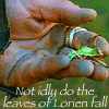 NotThatGirl: not idly do the leaves of lorien fall