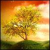 sadahar userpic