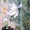 Leah Cutter: Lotus