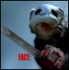 looseferrets userpic