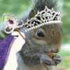IDK, my BFF Jared Leto?: skwrl prinsess.