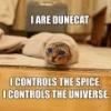 lt260: Dune Cat