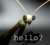 horrible_insect userpic