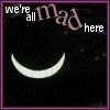 Gato Alice- We are all mad here