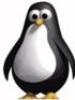 spb_linux