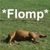flomp