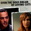Teyla/Bates - loving cats
