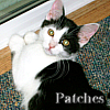addie71: Patches