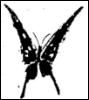 unpapillonnoir userpic