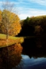 serenity, fall foliage, trees, reflections