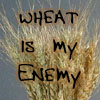 Wheat is my enemy