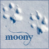 Remus J. Lupin: moony (pawprints)