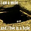 I am a mole